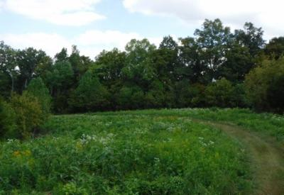 Dekalb County Residential Lots & Land For Sale: 16 .40 Ac. Ford Road
