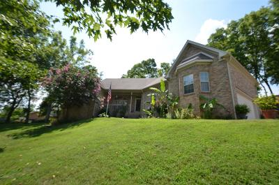 Mount Juliet Single Family Home For Sale: 603 Beacon Hill Ln