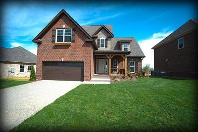 Spring Hill  Single Family Home For Sale: 5010 Brickway Court Lot 765