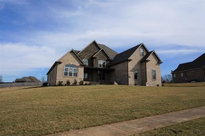 Clarksville Single Family Home For Sale: 29 Reda Estates