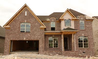 Mount Juliet Single Family Home For Sale: 606 Southshore Pt