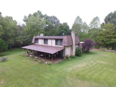 Joelton Single Family Home For Sale: 7614 Bidwell Rd