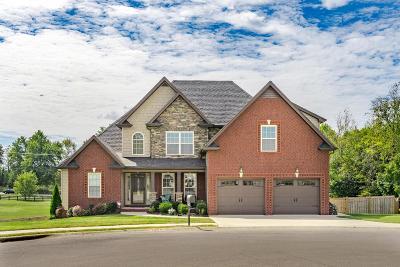 Clarksville Single Family Home For Sale: 880 Pergola Ct