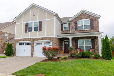 Nolensville Single Family Home For Sale: 8209 Middlewick Ln
