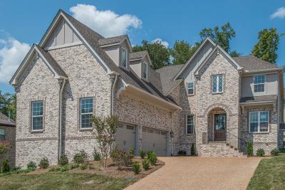 Hendersonville Single Family Home For Sale: 149 Fountain Brooke Dr, Lot 81