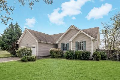 Clarksville Single Family Home For Sale: 4036 Challis Dr