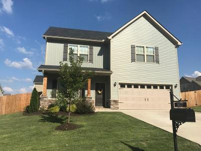 Spring Hill  Single Family Home For Sale: 1027 Timbervalley Way