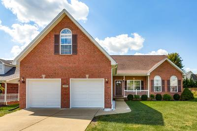 Spring Hill Single Family Home For Sale: 1503 Chapman Ln