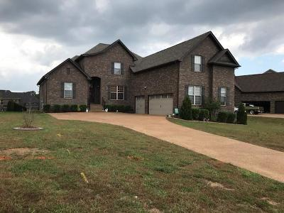 Hendersonville Single Family Home For Sale: 1043 Tower Hill Lane