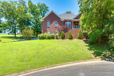Mount Juliet Single Family Home For Sale: 1205 Benton Hill Dr