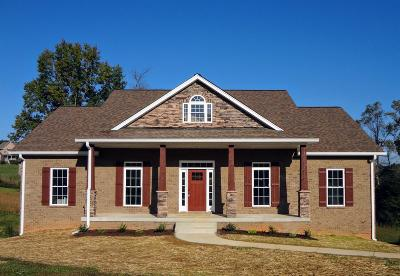 Pleasant View Single Family Home For Sale: 875 Dixie Ln