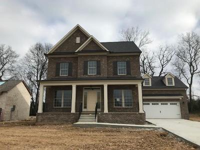 Spring Hill  Single Family Home Under Contract - Showing: 710 Rain Meadow Court