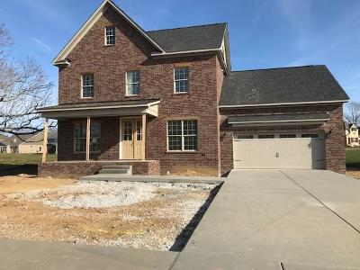 Spring Hill Single Family Home For Sale: 1059 Brixworth Dr