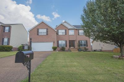 Hendersonville Single Family Home For Sale: 110 Fieldcrest Ct