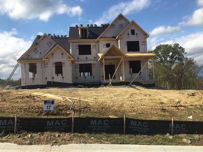 Nolensville Single Family Home For Sale: 17 Brooksbank Drive