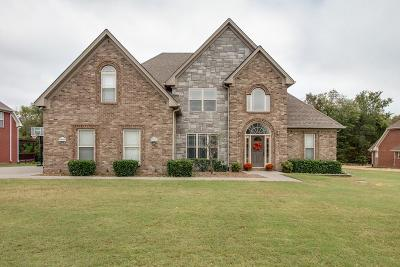 Mount Juliet Single Family Home For Sale: 138 Seven Springs Dr