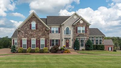 Mount Juliet Single Family Home For Sale: 802 Saddle Ridge Dr