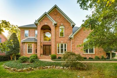 Old Hickory Single Family Home For Sale: 4013 Brandywine Pointe Blvd