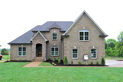 Mount Juliet Single Family Home For Sale: 1155 Mires Rd #17-C