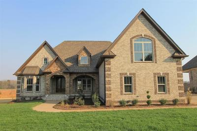 Mount Juliet Single Family Home For Sale: 993 Mires Rd #28