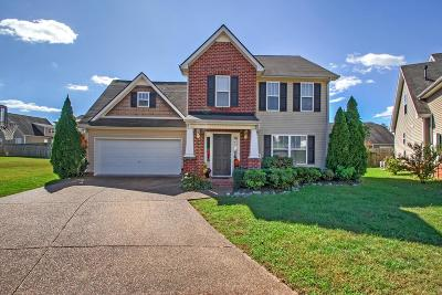 Spring Hill  Single Family Home For Sale: 1904 Baslia Ct