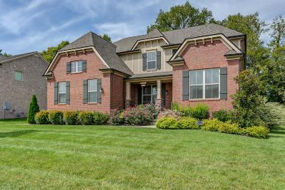 Spring Hill Single Family Home For Sale: 3047 Everleigh Pl