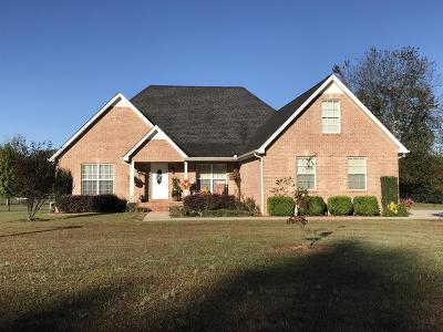Bedford County Single Family Home For Sale: 107 Doubletree Circle