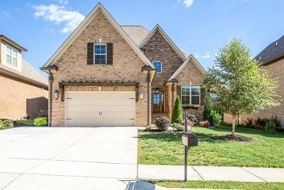 Spring Hill Single Family Home For Sale: 7004 Brindle Ridge Way