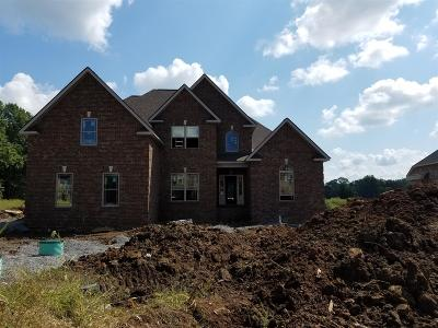 Rutherford County Single Family Home For Sale: 3533 Titus Ln