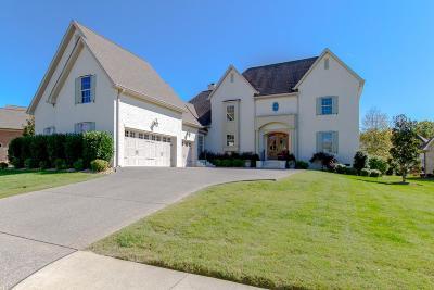 Hendersonville Single Family Home For Sale: 1006 Gadwall Cir