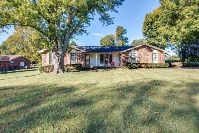 Hendersonville Single Family Home For Sale: 132 East Dr
