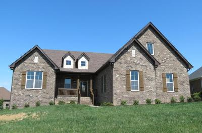 Sumner County Single Family Home For Sale: 119 Millers Pt