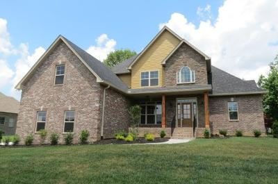 Sumner County Single Family Home For Sale: 277 Grandview Cir