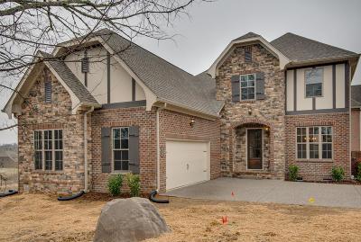 Nashville Single Family Home Under Contract - Showing: 54 Eagle Ridge, Lot 54