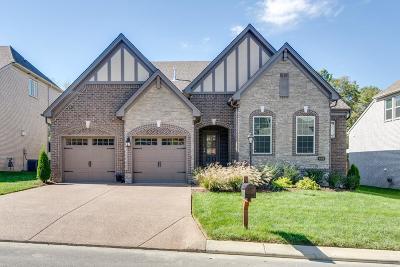 Mount Juliet Single Family Home For Sale: 426 Warren Hill Dr