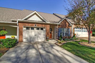 Spring Hill Single Family Home For Sale: 102 Westview Dr