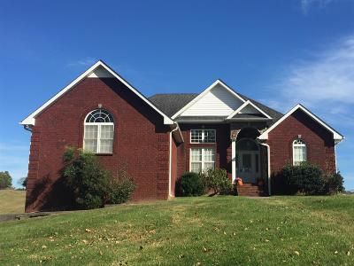 Gallatin Single Family Home For Sale: 920 Dobbins Pike