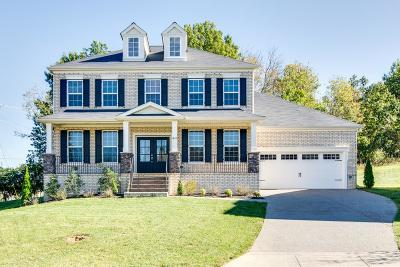 Mount Juliet Single Family Home For Sale: 441 Valley Spring Dr