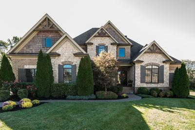 Williamson County Single Family Home For Sale: 1008 Orchard Hill Ct