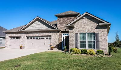 Rutherford County Single Family Home For Sale: 4906 Compassion Ln