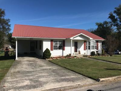 Alexandria Single Family Home For Sale: 102 Academy Ave