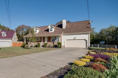 Smyrna Single Family Home For Sale: 514 Connie Court