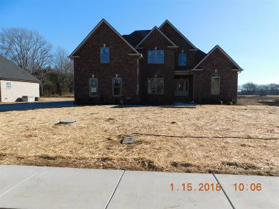 Rutherford County Single Family Home For Sale: 1459 Ansley Kay Dr