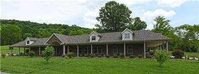 Rutherford County Single Family Home For Sale: 14447 Manchester Pike