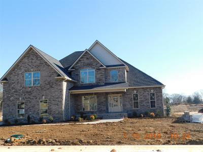 Rutherford County Single Family Home For Sale: 1463 Ansley Kay Dr