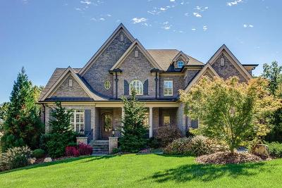 Williamson County Single Family Home For Sale: 1431 Wolf Creek Dr