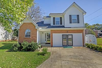 Smyrna Single Family Home For Sale: 308 Valley Ct