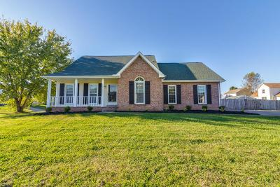 Clarksville Single Family Home For Sale: 815 Keystone Dr