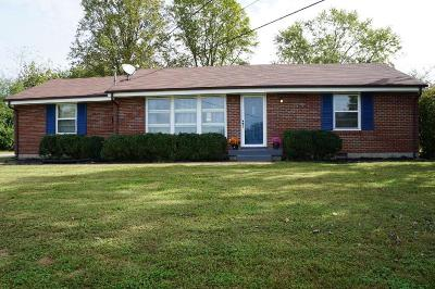Nashville Single Family Home For Sale: 255 Wilowen Dr