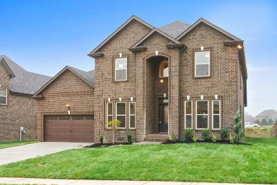 Clarksville Single Family Home For Sale: 2517 Remington Trace